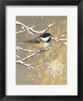 Framed Winter Birds Chickadee Color