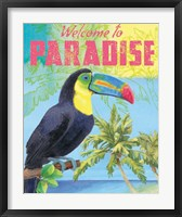 Framed Island Time Tucan II Bright