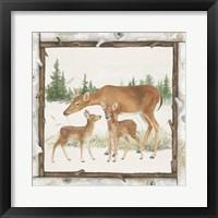 Framed Family Cabin II