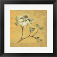 Framed Dogwood Blossom on Gold