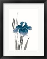 Framed Japanese Iris III Crop Indigo