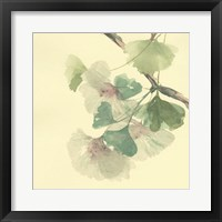 Framed Gingko Leaves II