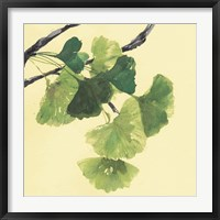 Framed Gingko Leaves I Dark