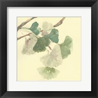 Framed Gingko Leaves I
