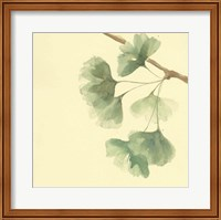 Framed Gingko Leaves III