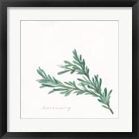 Framed Rosemary II