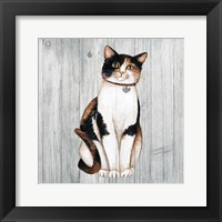 Framed Country Kitty III on Wood