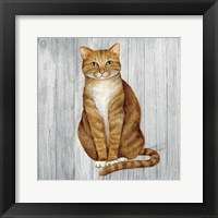 Framed Country Kitty II on Wood