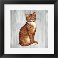 Framed Country Kitty IV on Wood