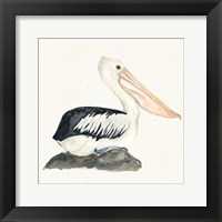 Framed Tropical Fun Bird II