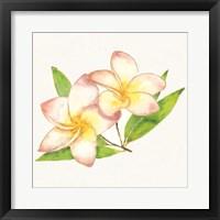 Framed Tropical Fun Flowers I