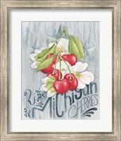 Framed American Berries III
