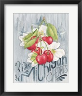Framed American Berries III