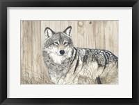 Framed Wolf in Grass on Barn Board