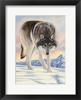 Framed Wolf in Snow