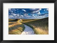 Framed Philbin Beach Path