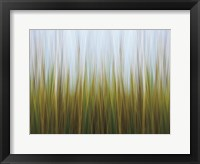 Framed Seagrass Canvas