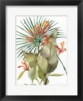 Framed Botanical Flame Lilies