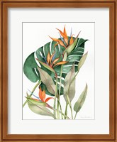 Framed Botanical Birds of Paradise