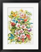 Framed Orchid Splendor with Birds