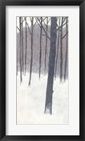 Framed Winters End