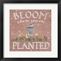 Framed Blooming Garden VII