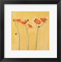 Framed Cadmium Orange Poppies