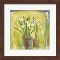 Framed Narcissi