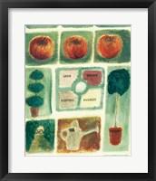 Framed Parsley Sage