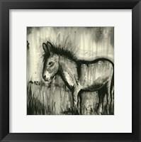 Framed BW Donkey