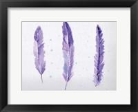 Framed Lavender Feathers