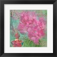 Framed Parfum De Paris