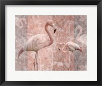 Framed Pink Flamingo Birds