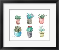 Framed Six Cacti