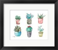 Framed Six Cacti