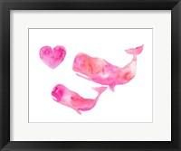 Framed Pink Whales