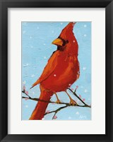 Framed Cardinal II