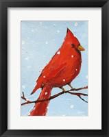 Framed Cardinal I