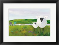 Framed Sheep in the Meadow