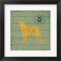 Loyal Dog Framed Print