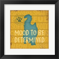 Framed Mood TBD