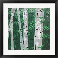 Framed Shady Grove