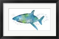 Framed Watercolor Shark I