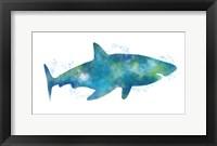 Framed Watercolor Shark III