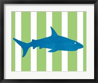 Framed Blue and Green Shark