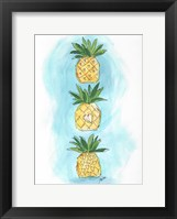 Framed Pineapples