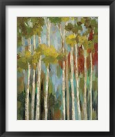 Framed Young Forest II