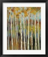 Framed Young Forest I
