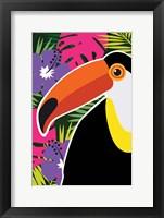 Framed Tropical Toucan