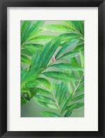 Framed Tropical Leaves IV